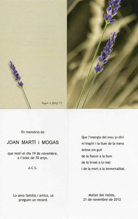 http://www.ngsm.org/images/Joan_Marti.jpg